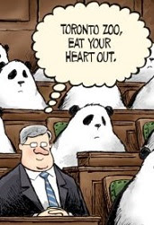 Theo Moudakis: Stephen Harper prefers Panda bears because they don't speak.