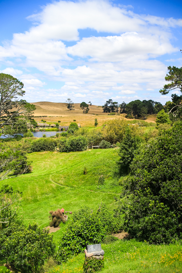 touring Hobbiton in New Zealand | rolling hills of The Shire