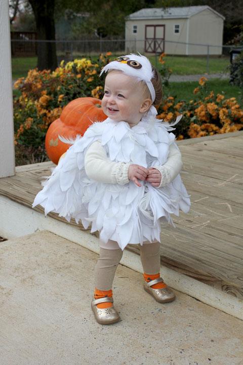 monday november 2 2015 sc 1 st crozette image number 11 of infant owl halloween costume
