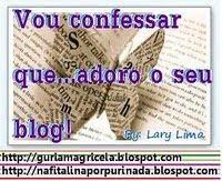 Vou Confessar que Adoro seu Blog