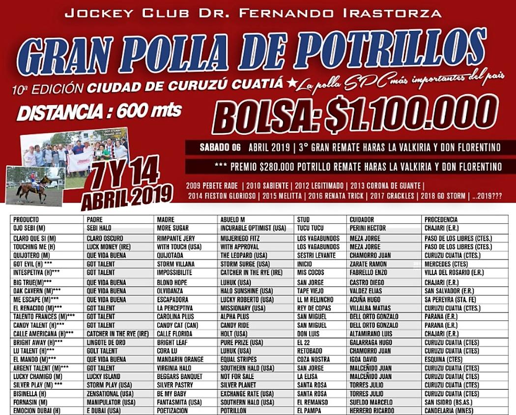 C. CUATIA - POLLA SPC PARTE 1