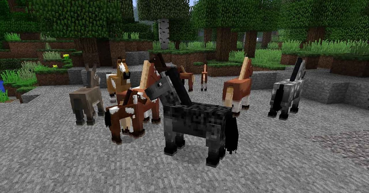 the horse update cracked minecraft