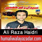 http://www.humaliwalayazadar.com/2015/06/ali-raza-haidri-nohay-2016.html