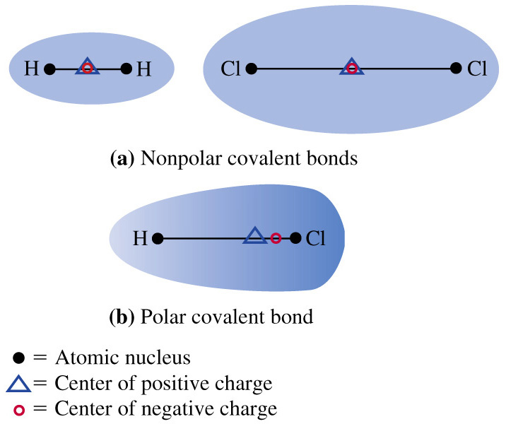 TommyKeith Nonpolar Covalent Bond Examples