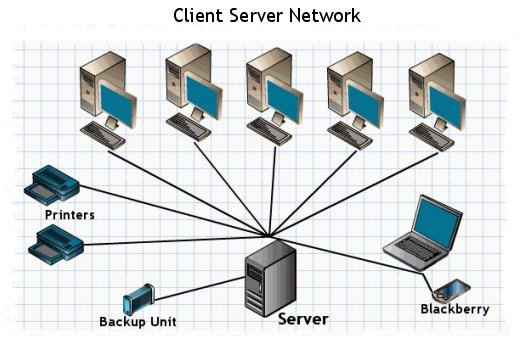 how to network computer: