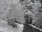 Estamos en... Invierno