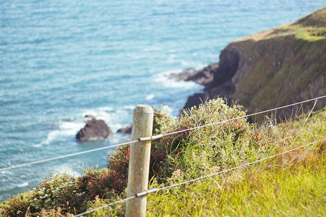 ballycotton cliff walk 2015