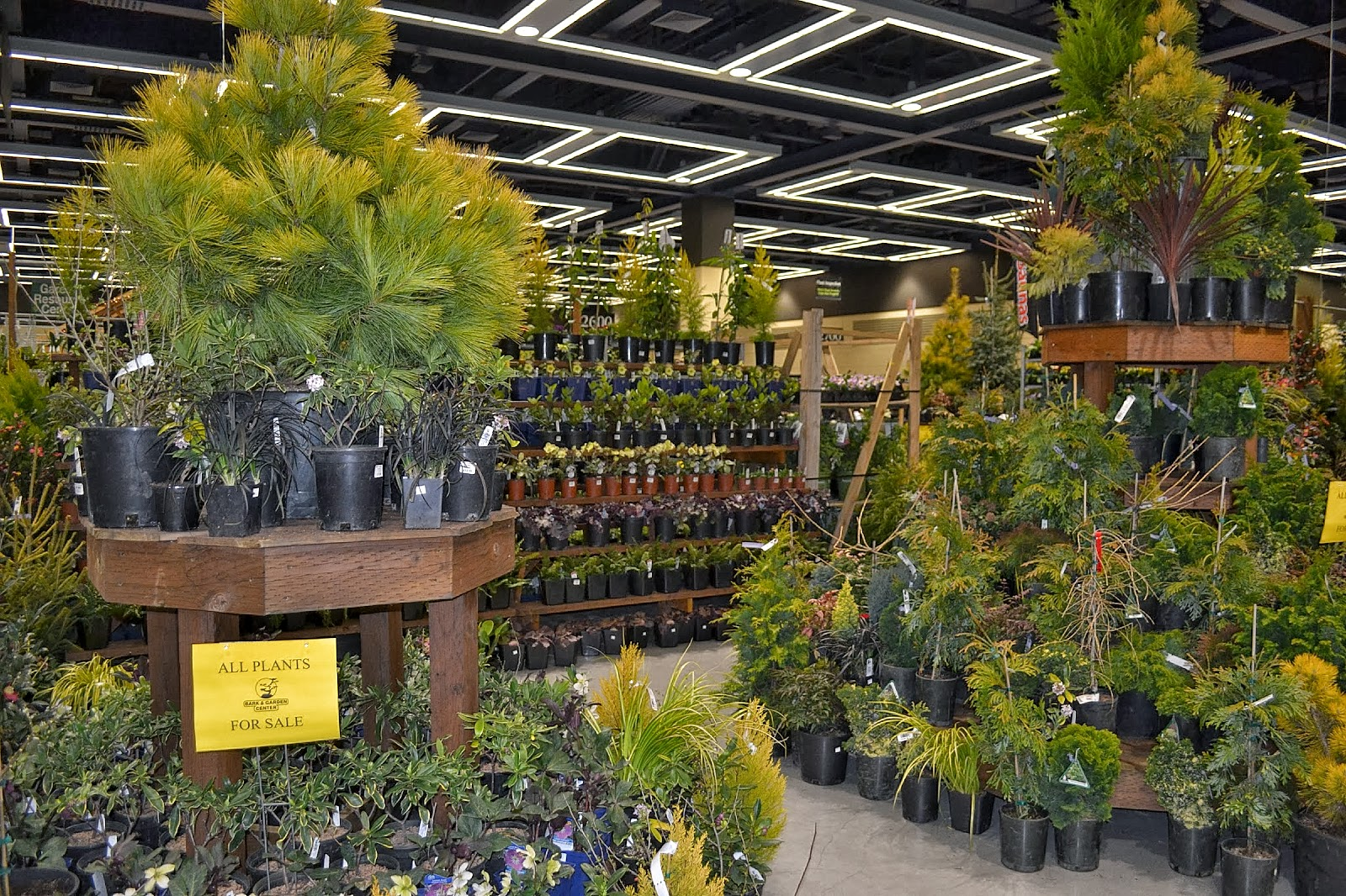 The Outlaw Gardener: The Northwest Flower and Garden Show - So Many ...