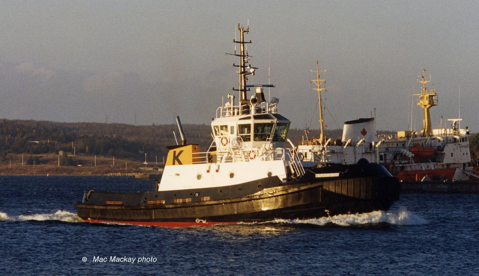 Atlantic Fir (2)