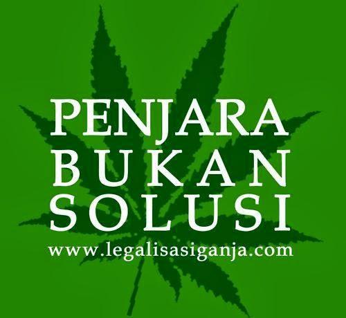 Dukung Legalisasi Ganja