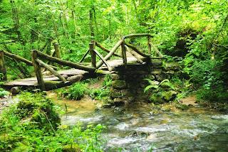 Puente de madera sobre el arroyo