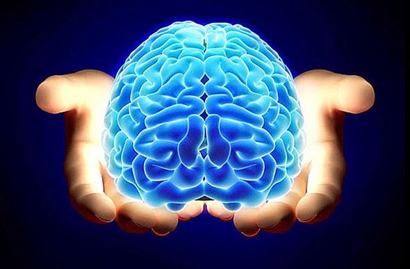 cerebro-salud