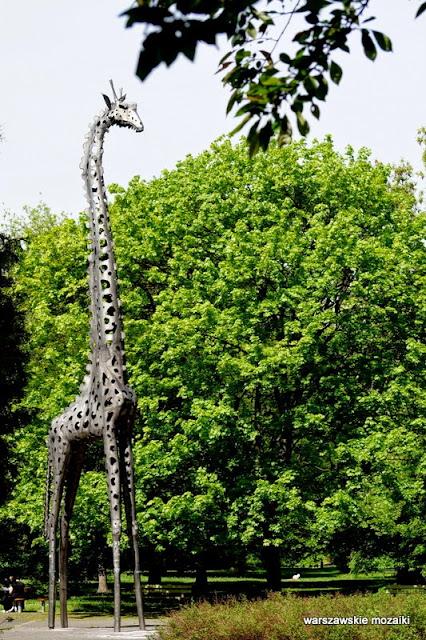 Warszawa Praga Północ park im Żołnierzy 1 Armii Wojska Polskiego zieleń żyrafa