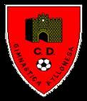 C.D. Gimnástica Ayllonesa
