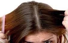 cara membersihkan rambut, rambut, rambut bersih