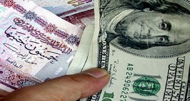 سعر الدولار في مصر اليوم الثلاثاء 19-1-2016