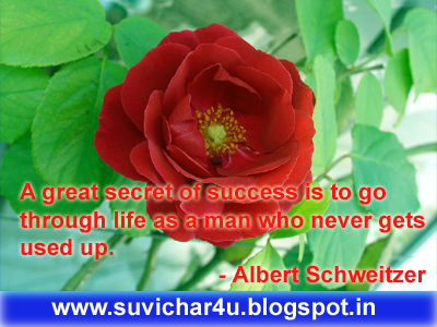 A great secret of success is to go through life as a man who never gets used up