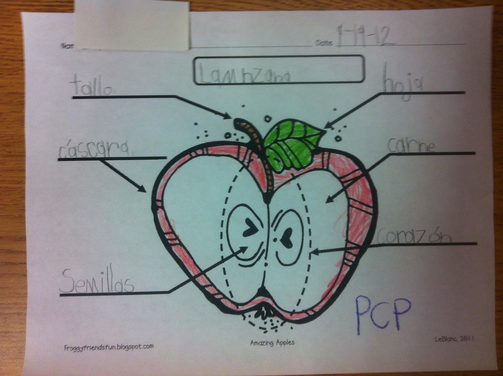 Kinder Dual Language Divas: Apples and pumpkins everywhere!