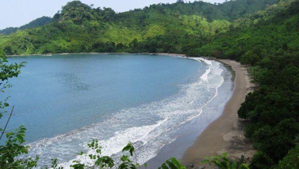 Bandealit, Perpaduan Hutan dan Laut Jember nan Eksotis