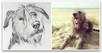 former Sketching William blog