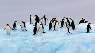No deal on huge Antarctic marine reserves