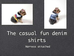 Lilly Foschino Dog Fashion  2011 fall collection  Sneak peak .