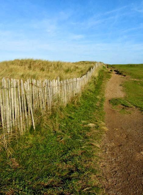 sand dunes Westward Ho!
