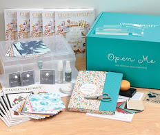 NEW Consultant Kit/NEW Product!