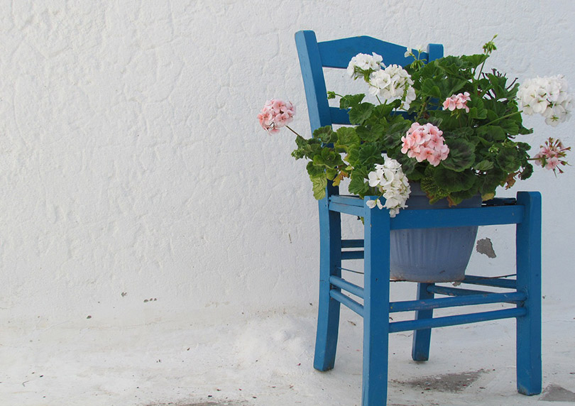 corfu, chair flowers