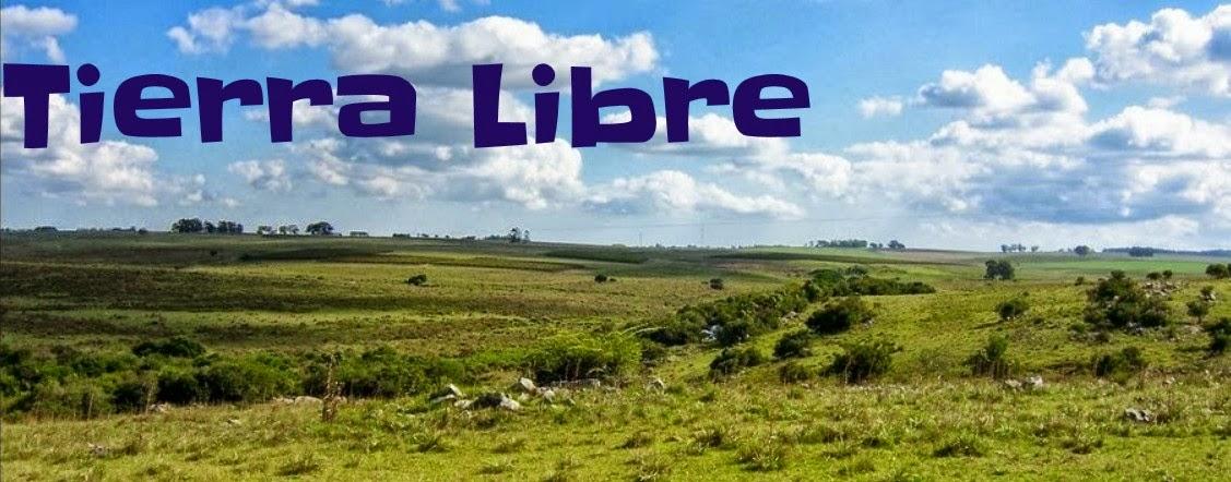 http://tierralibream.blogspot.nl/
