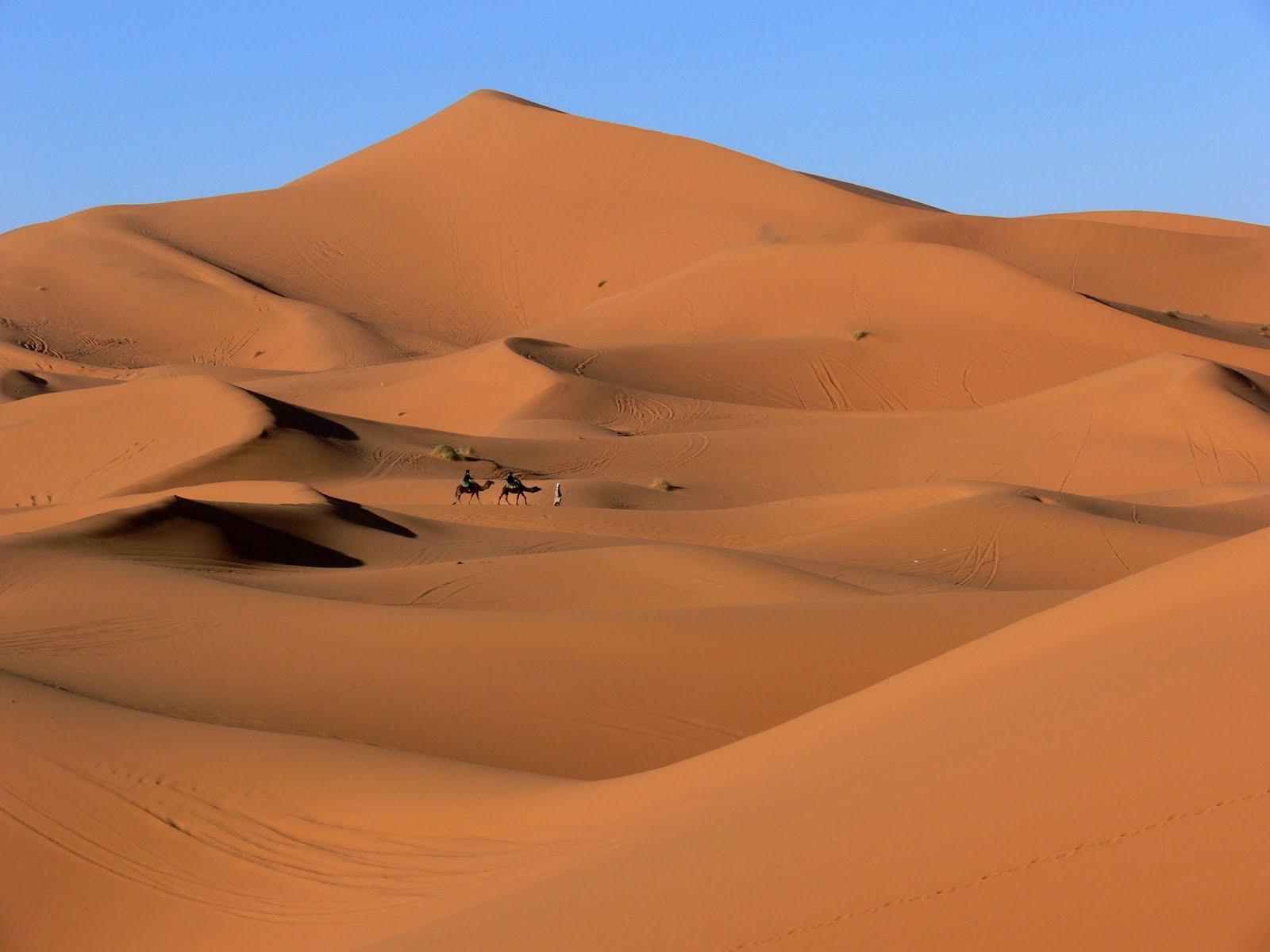 Sand Dunes Sand Dunes of Sahara