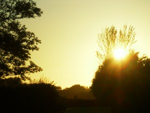 Sunset at Elscott Park, Birdham, Sussex - Disabled Access Camping