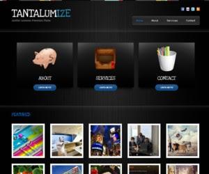 Tantalumize WordPress Theme