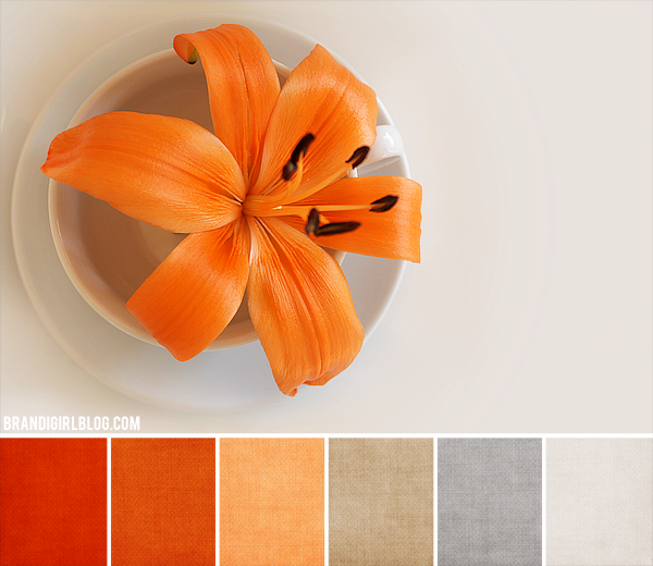Beads of clay blog color inspirations october - Colors that compliment orange ...
