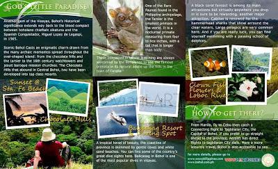 16 Ejemplos De Brochure Relacionados Al Turismo