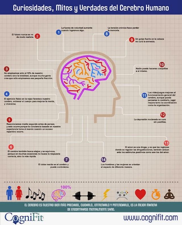 Curiosidades, Mitos y Verdades del Cerebro Humano