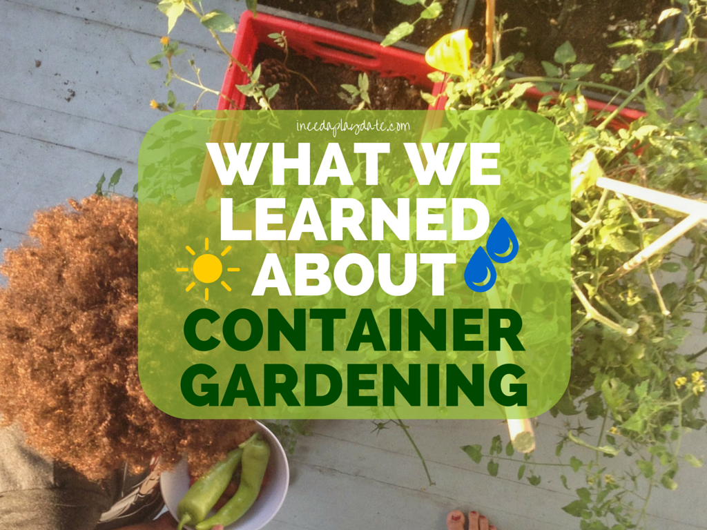 What We Learned About Container Gardening