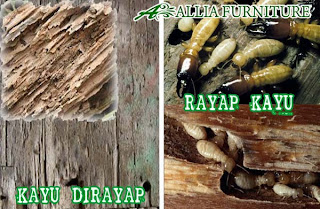 Rayap Furniture Anti Rayap Allia Furniture