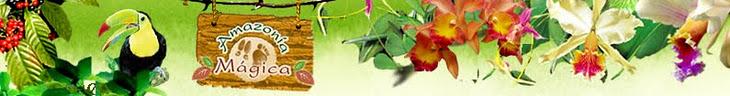 Reflexiones, artículos, ensayos amazónicos