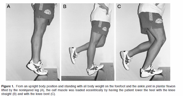Running writings: Injury Series: Eccentric exercise and ...