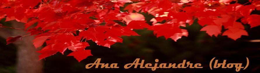 Ana Alejandre (blog)