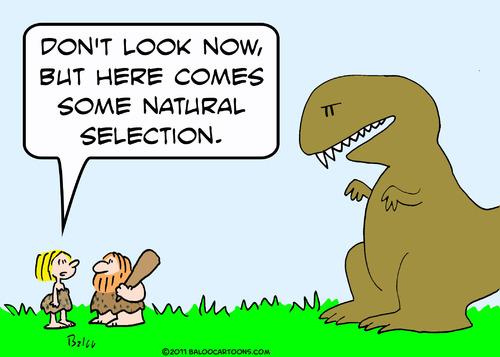 Natural Selection Anxiety