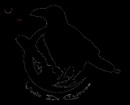Vuelo de Cuervos