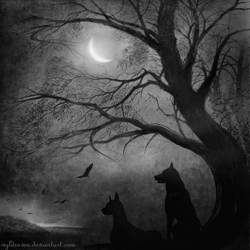 18-Wolfshade-wyldraven-Surreal-Night-Time-Photo-Manipulation-www-designstack-co