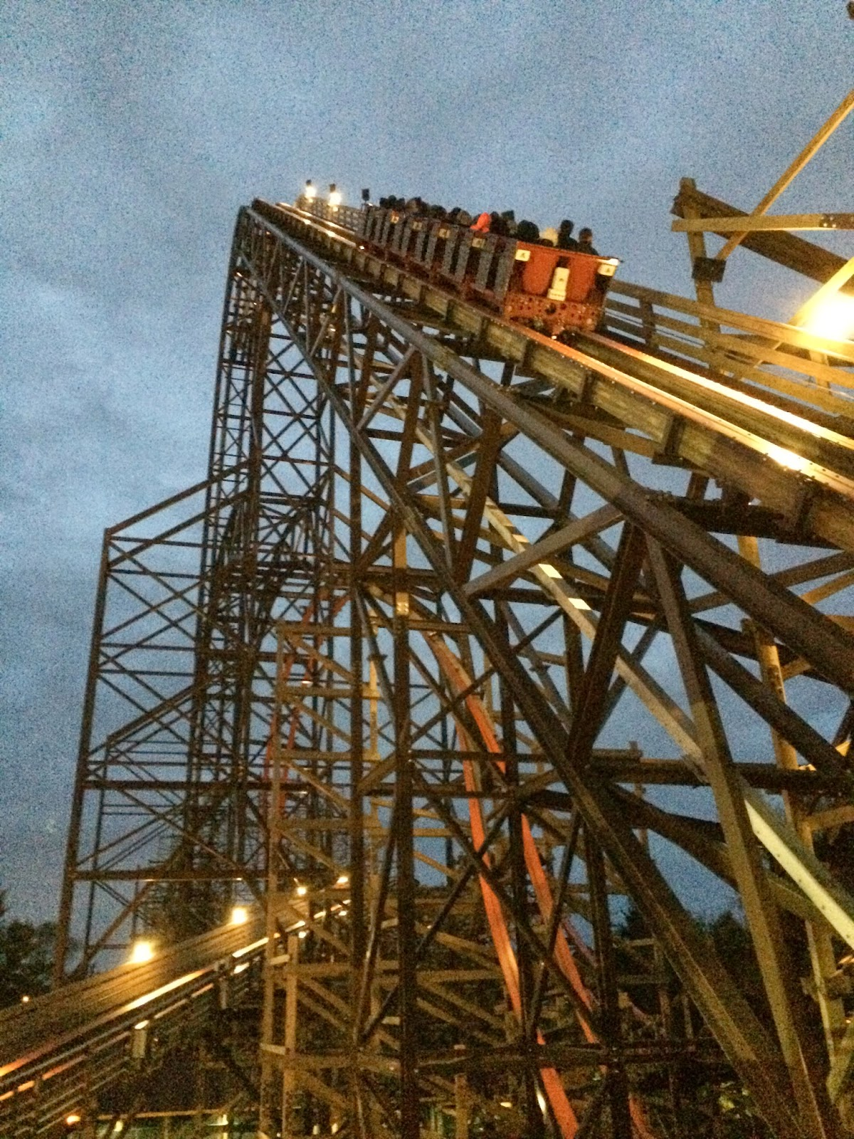 Life\'s a Roller Coaster (just the way I like it!)