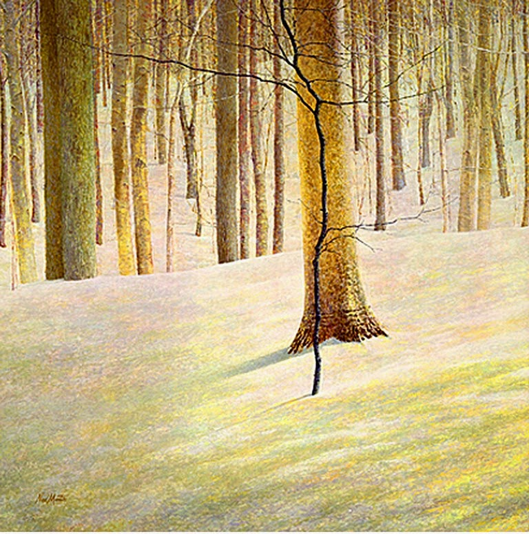 pintor-de-paisajes-realistas