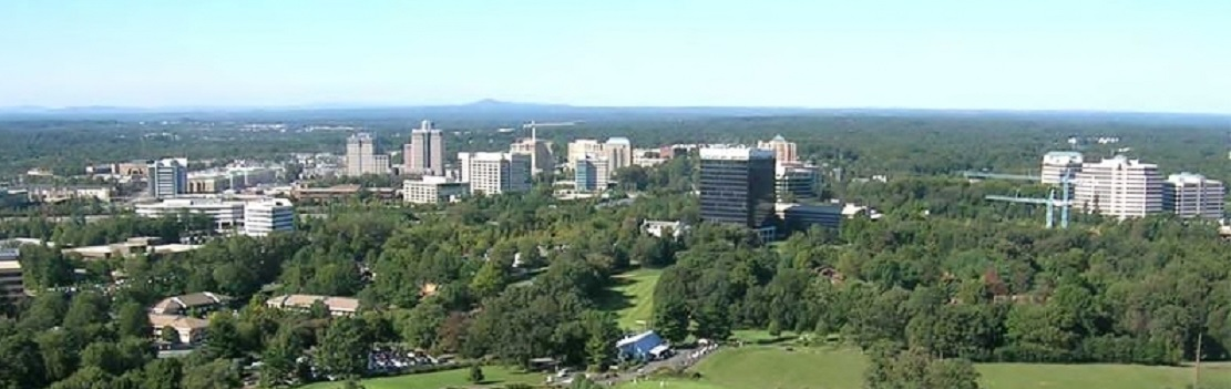 Reston Panorama--Urban and Open Space