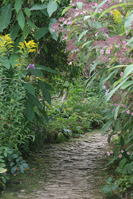 Hidcote Manor Gardens Hydrangea Walk
