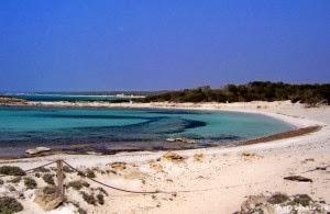 nøgen strand