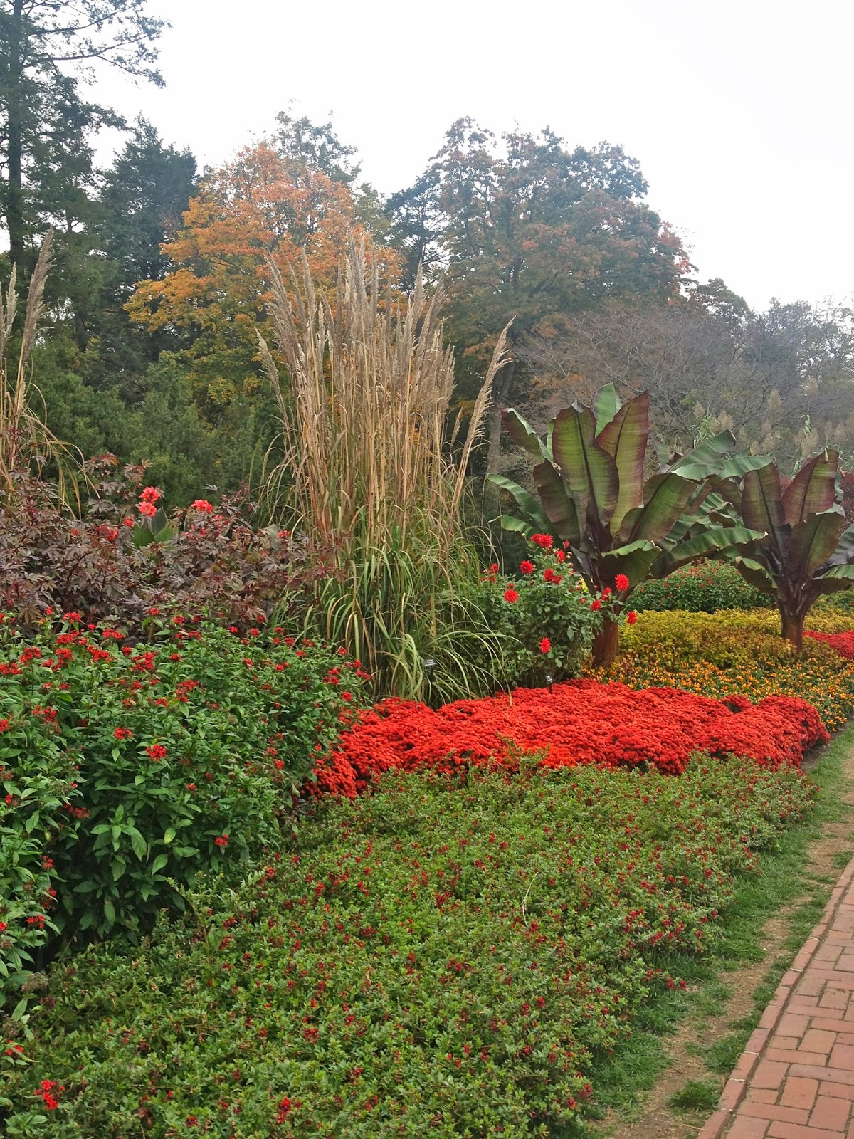 My City Garden: Autumn at Longwood Gardens